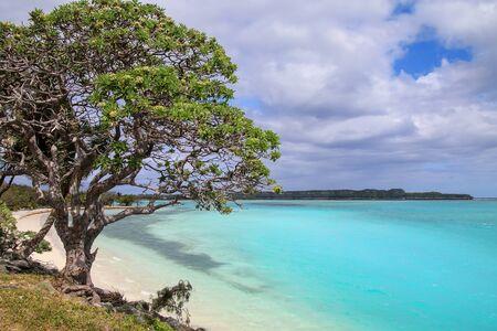 Lekiny Bay on Ouvea Island, Loyalty Islands, New Caledonia.
