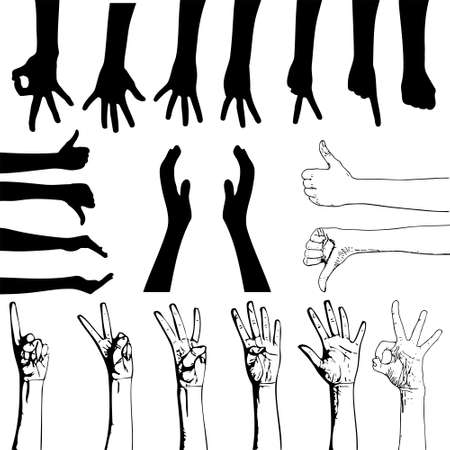 Vector set of gesturing hands shapes Vector