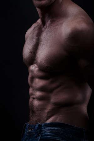 Musculed model