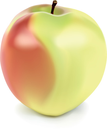 yellow and red apple with mesh gradient Vector