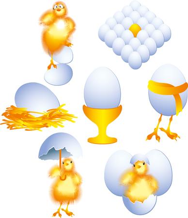 pascha: chicken
