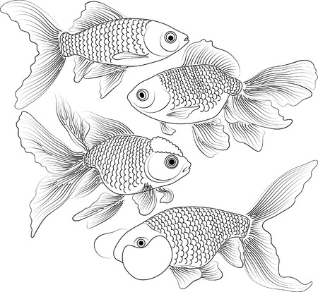 vector black and white goldfish Vector