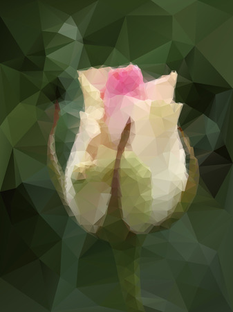 rose blanche: fond blanc est pass� de triangles