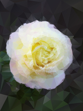 background white rose from triangles Vector