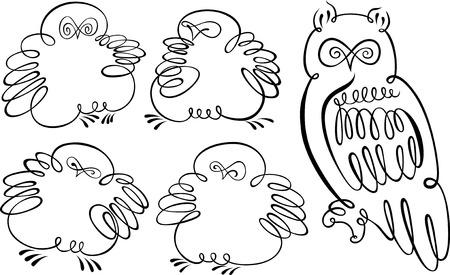 owlet: b�ho y owlet Vectores
