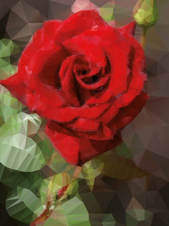 red rose background: red rose background