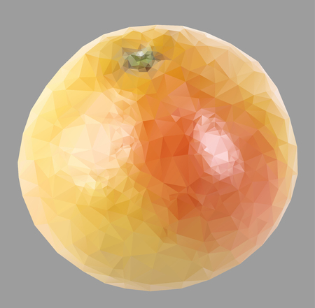 grapefruit with triangles Vector