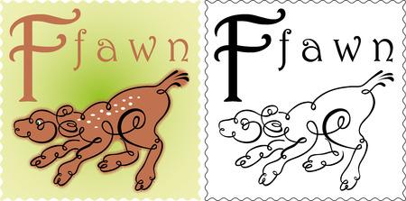 fawn: zoo alphabet fawn