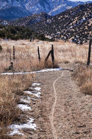 bile: Singletrack Mountain Bike Trail