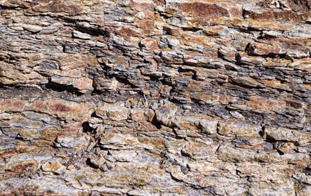 rock strata: Shale Rock Layer