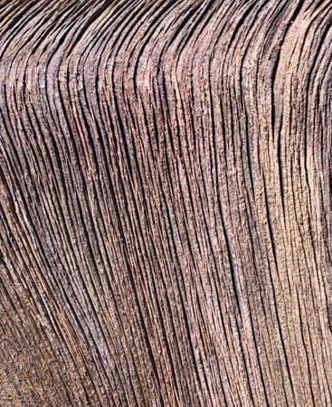 weathered: Weathered Driftwood