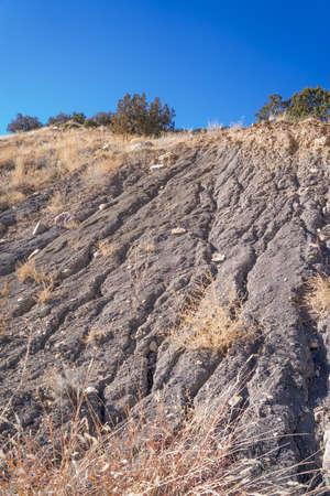 erosion: Soil Erosion Of Creek Bank