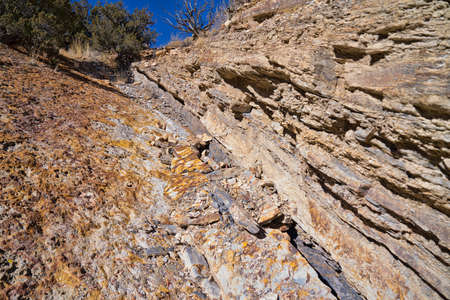 rock layers: Sedimentary Rock Limestone Layers