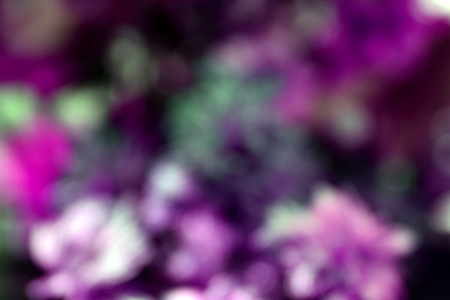 Abstract blur flower background. Unfocused.