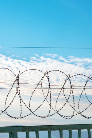 Barbed wire on a metal fence. Behind the fence is a blue sky with feathery clouds. Vertical photography.