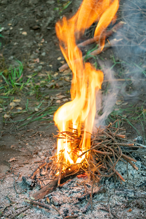 Campfire closeup. Brushwood well, it inflames and gives a great flame. Fire for cooking. Vertical photography.
