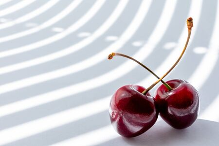 two cherry on white background illuminated by the rays of the sun from the window passing through the half-open blinds. copy space. modern Studio photography.