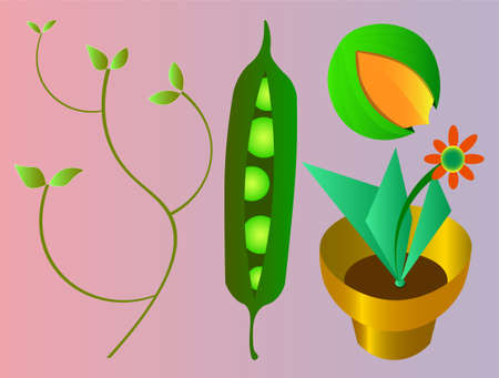 Seed and plant illustration.