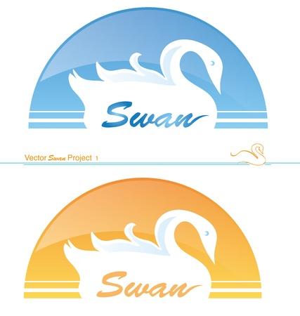 swan project 1