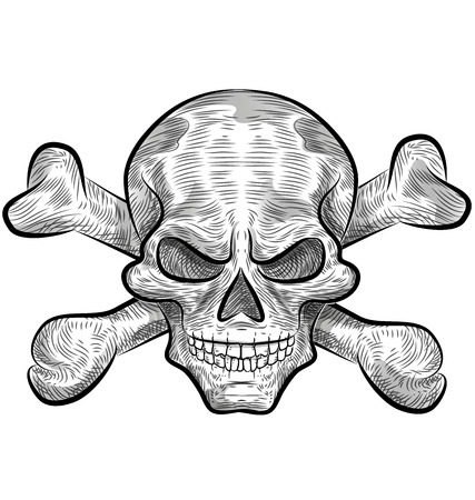 skull sketch design isolate on white Vector