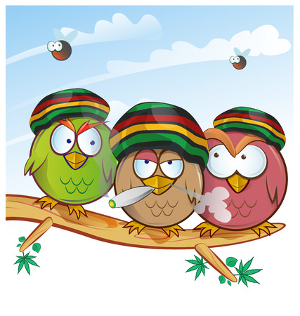 jamaican owl group cartoon on sky  background