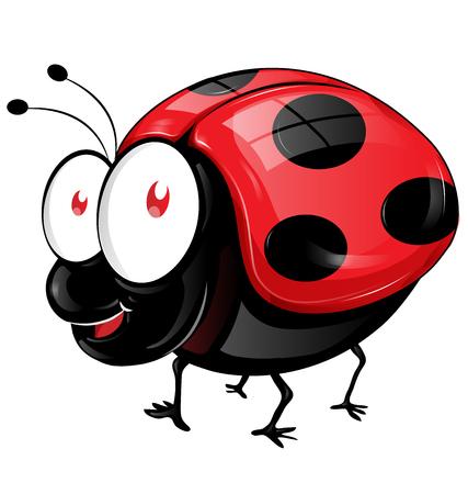 lady beetle: ladybug cartoon isolated on white background