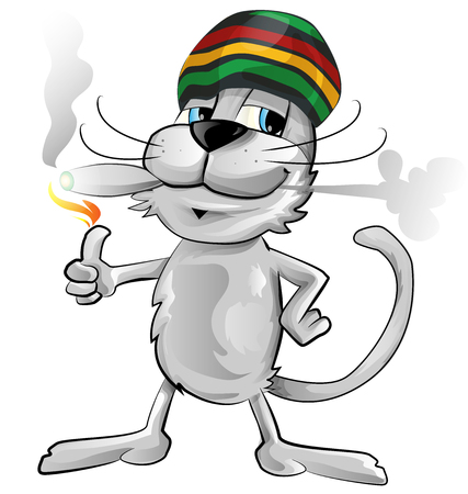 rasta hat: fun jamaican cat isolated on white background