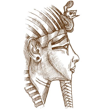 mummy: gold tutankhamon mask hand drawn