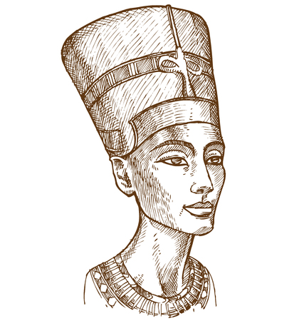 bust: Bust of Nefertiti hand drawn Illustration