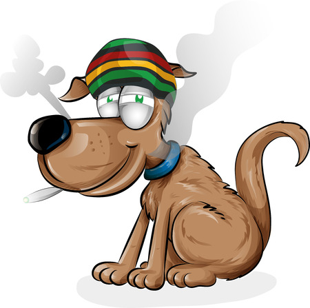 jamaican dog cartoon isolated on white background