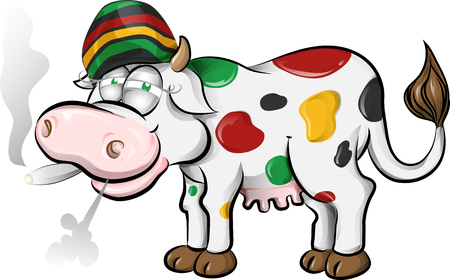 jamaican cow cartoon on white background