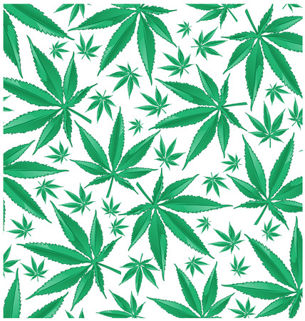 Marijuana green pattern on white background. Illusztráció