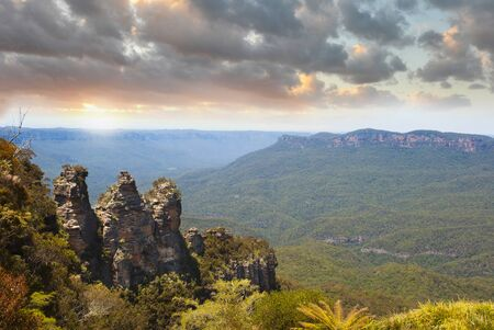 Tree Sisters Blue Mountains Australia sunset