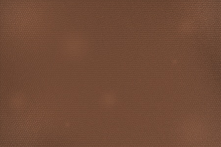 Brown Leather texture. Illustration was prepare by Photoshop illustration