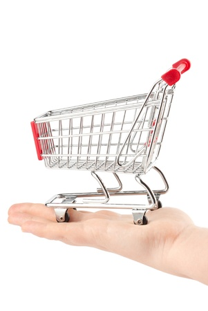e money: Steel Shoping Cart on the white background