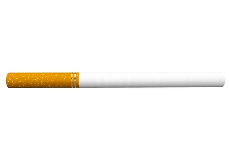 ifestyle: A single cigarette on a white background