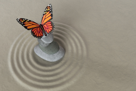 Japanese zen garden meditation stone for concentration and relaxation with butterfly photo