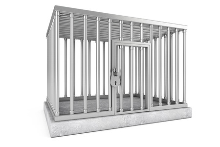 incarceration: Metal Cage with Lock on a white background