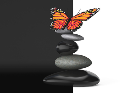 pebble: Balanced stones with butterfly on a white and black background