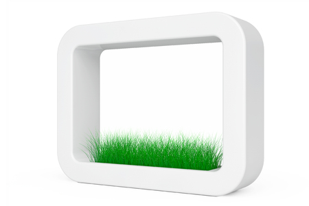 planter: Grass in White Ceramics Planter on a white background. 3d Rendering Stock Photo