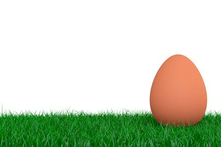 brown egg: Brown Egg over Grass on a white background. 3d Rendering