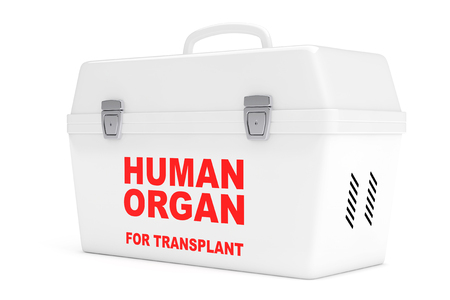 cooler boxes: Fridge Box for transporting Human Donor Organs on a white background. 3d Rendering