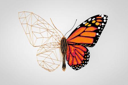 Mariposa abstracta Poli Wired baja sobre un fondo gris. Representación 3d