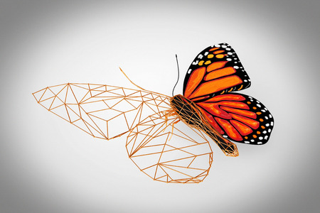 wired: Abstract Wired Low Poly Butterfly on a grey background. 3d Rendering