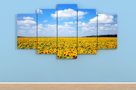 Sky with Fild of Sunflowers Poster in Room on a Blue Wall background. 3d Rendering