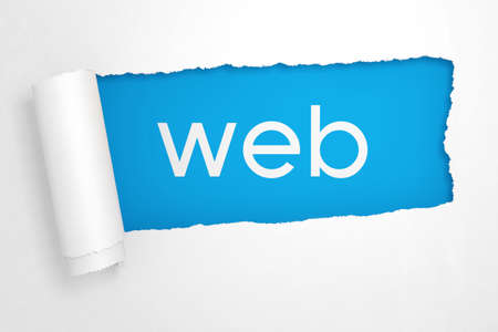 Web Sign in the Hole of Torn White Paper extreme closeup. 3d Rendering