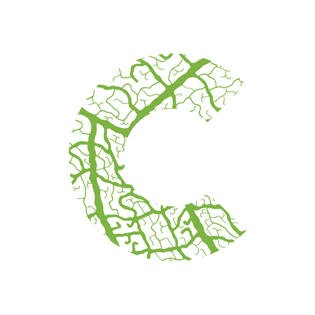 venation: Nature alphabet, ecology decorative font. Capital letter C filled with leaf veins pattern green background. Leaves texture hand draw nature alphabet. Vector illustration. Illustration