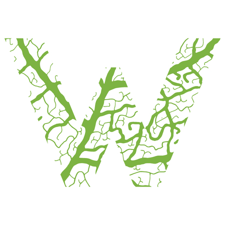venation: Nature alphabet, ecology decorative font. Capital letter V filled with leaf veins pattern green background. Leaves texture hand draw nature alphabet. Vector illustration.