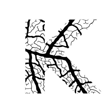 Nature alphabet, ecology decorative font. Capital letter K filled with leaf veins pattern black on white background. Leaves texture hand draw nature alphabet. Vector illustration.
