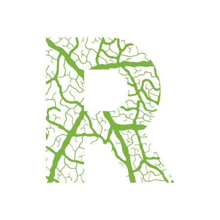 venation: Nature alphabet, ecology decorative font. Capital letter R filled with leaf veins pattern green background. Leaves texture hand draw nature alphabet. Vector illustration.